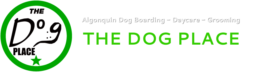 Algonquin Dog Boarding - Daycare-Grooming